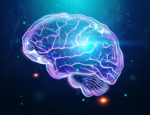Brain fog es una Red Flag: La Neuroinflamación