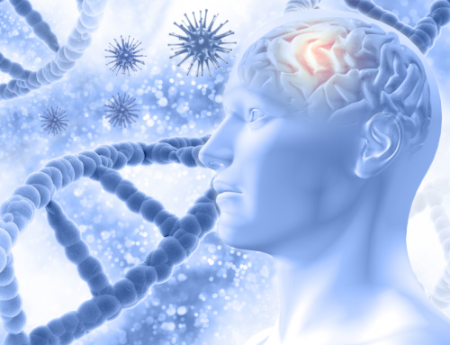 El cerebro como regulador de la inflamación